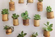Convite para jardinar! Inspire-se na jardinagem e paisagismo!