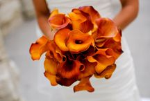 Wedding: Bouquet / Bouquets in all colors and combinations