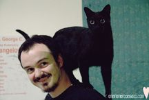 Chicos de Gatos, ¿Locos? / Chicos de gatos son hombres amantes de los felinos, ¿locos?, estilosos, interesantes, cultos y apasionados. ¡Con ganas de repatir con el mundo su amor por los gatos!