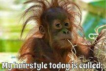 Damn it, hair...!!