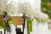 Flores y diseños