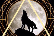 Couverture de ma fiction Lune noire disponible sur wattpad / De la romance, du paranormal et de l'action dans la lignée de Twilight, Buffy contre les vampires et autres Teen Wolf...