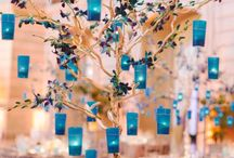 Quince ideas / by Jessica Pompa