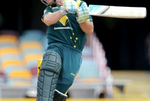 Cricket shots