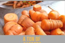Carrots / Do you ever end up with more carrots than you know what to do with? Here you'll find lots of delicious veggie and vegan recipe ideas to use them up.