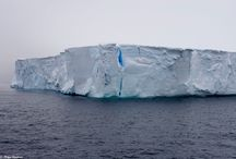Antarctica...the best place I've ever visited