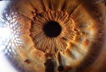Fotos ojos