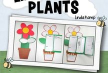 Pyp diary of a plant