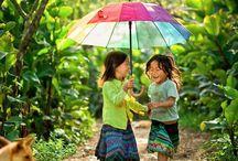 nature vietnam
