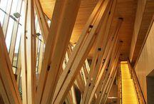 Timber Structure (Endoskeleton)