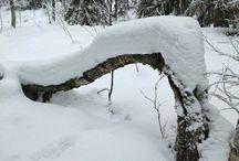 Winter photography 2016 -02 in Fulufjällets Nationalpark Sweden / Wintertime in Fulufjällets Nationalpark Sweden. With Swedens highest frozen waterfall Njupeskär.