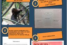 Svenska: skriva olika typer av texter
