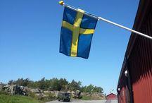 Oscar II fort, Sweden