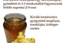 Méz mint gyógyszer