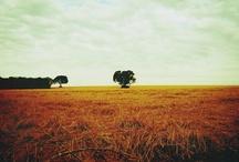 get lost / by Fernanda Pompermayer