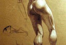 Anatomía para artistas
