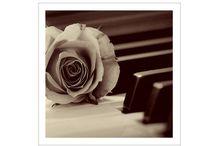 Uitvaart pianist / Bent u op zoek naar mooie pianomuziek voor bij een uitvaart? BoekeenPianist heeft ruime ervaring in ceremoniële diensten zodat u geen omkijken heeft naar de muziek van uw keuze. Ondanks het verdriet kunt terugkijken op een mooie uitvaart en een prachtige herinnering.