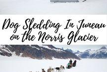 family road trips: Alaska