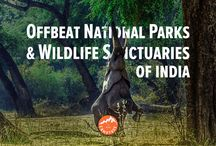 Offbeat National Parks and Wildlife Sanctuaries in India