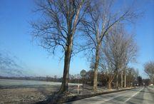 Winter / Winter in Polen