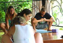 yoga retreat research