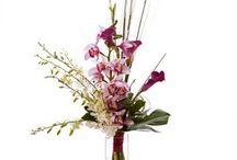 Buchete superbe Orhidee / Buchetele de Orhidee reprezinta un cadou extrem de pretentios si cu un aspect extravagant, perfecte pentru a-ti impresiona persoana draga.