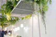 Interior : Ceiling