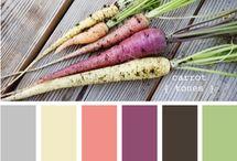 Palettes / Color Palettes
