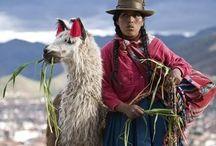 ROAD TO BOLIVIA