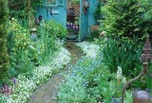Moje ogrodowe inspiracje