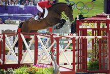course designing  / what I would love to do with my life: design courses and jumps for riders and events / by Caylin Barnes