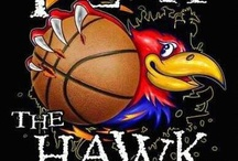 KU Jayhawks!! / by Ginger Ward