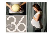 Pregnancy Photography / by Paige Czelusta