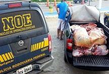 PRF apreende 800 kg de carne transportados irregularmente em Socorro