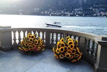 Pics | Summer 2015 | CastaDiva Resort & SPA / A photo gallery dedicated to your corner of heaven on Lake Como