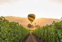 Northern California Wine Country Lifestyle