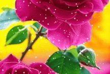 Çiçeklerin   Dili