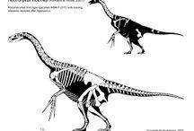 Dinosaur - Therizinosaur