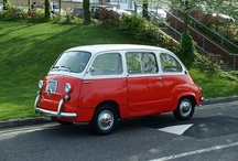 BEAUTIFUL MULTIPLA