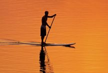 Standup Paddleboarding (SUP) / by StoreYourBoard.com