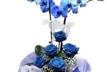 Father's Day | Babalar Günü / En Güzel Babalar Günü Çiçekleri, sizler için özenle bir araya getirilerek hazırlandı ve teslimata gönderilmeyi bekliyor. Geç kalmadan online sipariş vermek için www.meliscicekcilik.com web adresimizi ziyaret edebilirsiniz.