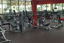 Buy Commercial Gym Equipment