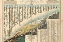 Victorian Infographics / by Catherine Dean
