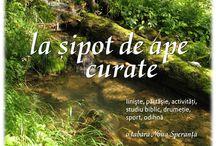 """Tabăra """"La sipot de ape curate"""" / Despre tabăra """"La sipot de ape curate"""" organizată de Noua Speranţă în anul 2014 pe Valea Streiului, în Munţii Şureanu."""