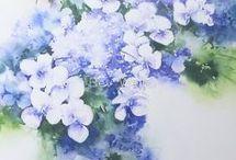 hydrangea in watercolor