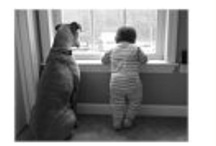 boxers / waiting for daddy