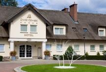 HOTELE I RESTAURACJE / HOTELE