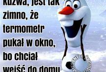 zabawne cytaty po polsku