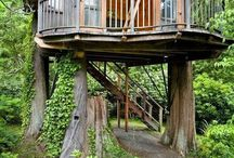 Tree Houses / by Jo Laughlin
