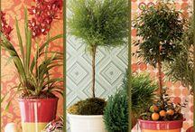 Idées jardinage